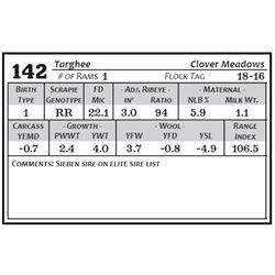 Lot 142 - Targhee