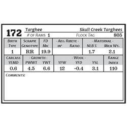 Lot 172 - Targhee