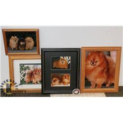 FRAMED DOG PICTURES