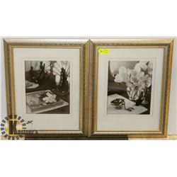 LOT OF TWO FRAMED BLACK AND WHITE SHOW HOME