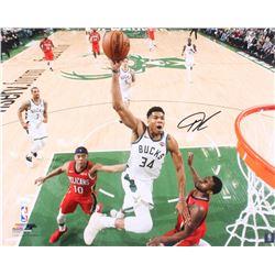 Giannis Antetokounmpo Signed Milwaukee Bucks 16x20 Photo (JSA COA)