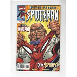 Peter Parker Spider-Man Issue #8 by Marvel Comics