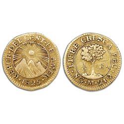Guatemala (Central American Republic), gold 1/2 escudo, 1825M.