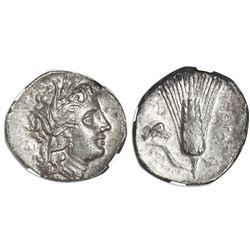 Lucania, Metapontum, AR stater, ca. 330-280 BC, NGC AU, strike 4/5, surface 2/5.