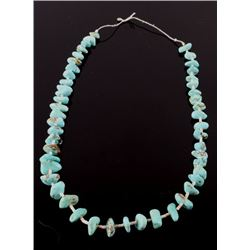 Navajo Dry Creek Turquoise & Heishe Shell Necklace