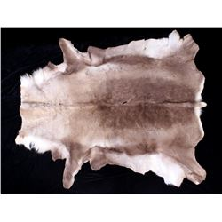 Professionally Tanned Caribou Hide