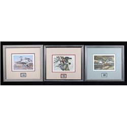 Montana Waterfowl Framed Prints & Stamp Set