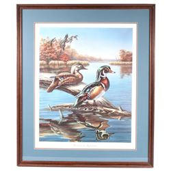 Wood Duck Reflections Meger Limited Edition Print