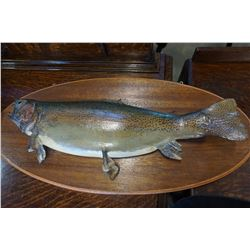 MOUNTED RAINBOW TROUT