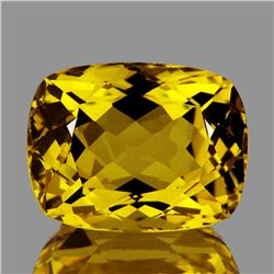 Natural Golden Yellow Beryl 9x7 MM - FL