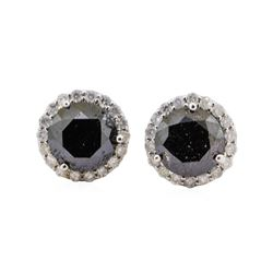 3.92 ctw Black Diamond Earrings - 14KT White Gold