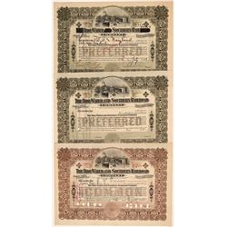 Tidewater Southern Railway Stock Certificate Trio  106816