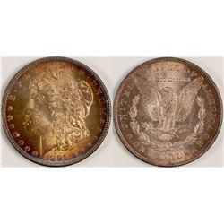1891-CC Gem Morgan Dollar  108130