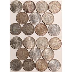 Morgan Dollars  109031