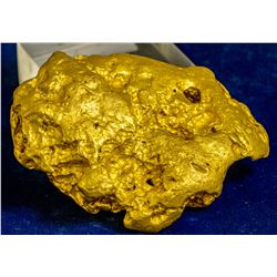 Alaska Giant Gold Nugget in the Shape of Australia!  38.39ozs 109060