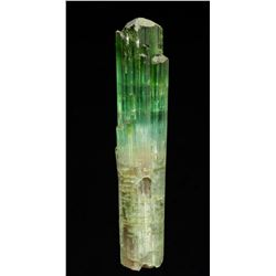Elbaite (Tourmaline) from Brazil  53010