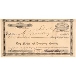Troy Mining & Development Co. Stock Certificate  106739