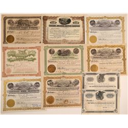 Pima County, Arizona Mining Stock Certificate Collection  106724
