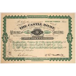 Castle Dome Mining & Smelting Co. Stock Certificate  107587