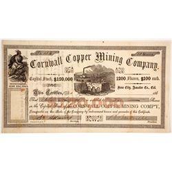 Cornwall Copper Mining Company Stock  90502