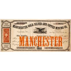 Manchester Gold, Silver and Copper Mining Company Stock  80576