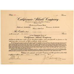California Alkali Company Stock Certificate  106707