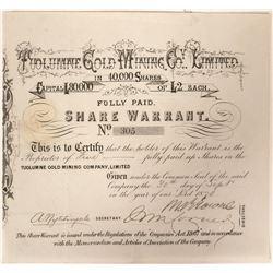 Tuolumne Gold Mining Warrant  90992