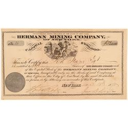 Hermann Mining Company Stock Certificate  106947