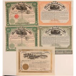 Five 1890's Victor Gold Mining Company of Cripple Creek Stocks  105865