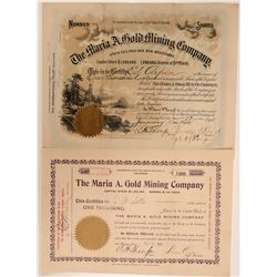 Maria A. Gold Mining Company Stocks (2)  105917