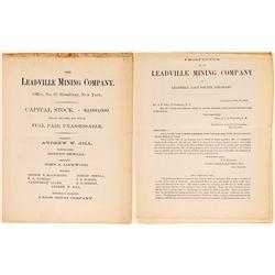 Leadville MC - 1878 prospectus  104803