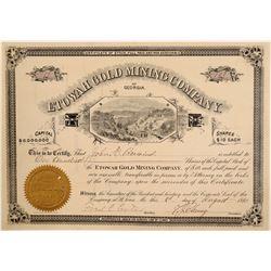 Etowah Gold Mining Company Stock Certificate  106961