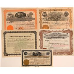 5 Different Thunder Mountain, Idaho Mining Stock Certificates  106731