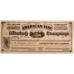 American Flat Mining Company Stock Certificate  105911