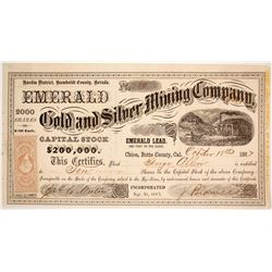 Emerald Gold & Silver Mining Company  81013