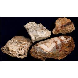 Midas Nevada Gold Mine Specimens (4 mines)  108219