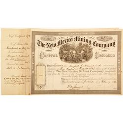 New Mexico Mining Company Stock Certificate  60272