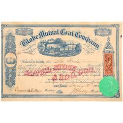 Globe Mutual Coal Company Stock Certificate  106980
