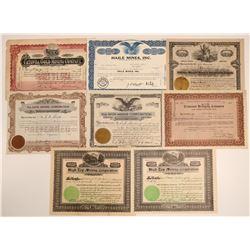 Virginia, Tennessee, & North Carolina Mining Stock Group  106915
