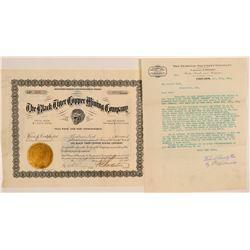 Black Tiger Copper Mining Company Stock  104522
