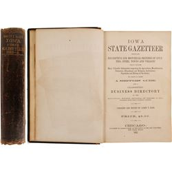 Iowa State Gazetteer, 1865  80278