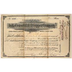 Anita Consolidated Copper Company Stock Certificate  107499