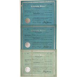 Calarivada Silvers Stock Certificates  106703