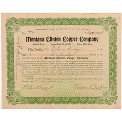 Montana Clinton Copper Stock  109530