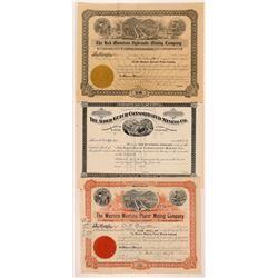 Alder Gulch, MT Mining Stocks (3)  108175