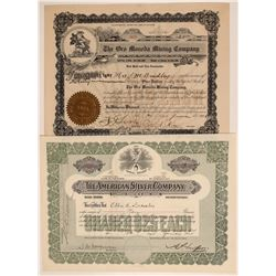 Two Different Silver City, New Mexico Mining Stock Certificates  106770