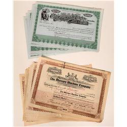 Automobile Stock Certificates: Mercury Machine and Ohio Automobile  107599