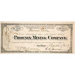 Phoenix Mining Company Stock Certificate  62823