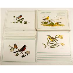 Songbirds of America Placemats (6)  84812