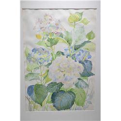 "Framed still-life watercolour of hydrangeas signed by artist 21"" X 15"""